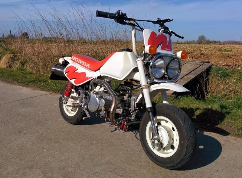 1991 Honda Z50JM