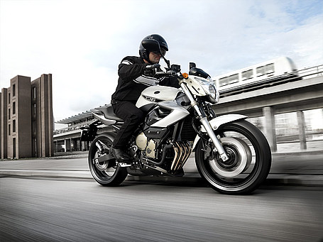 2009 Yamaha XJ6 Picture